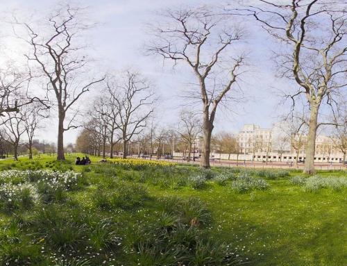 St James Park | London